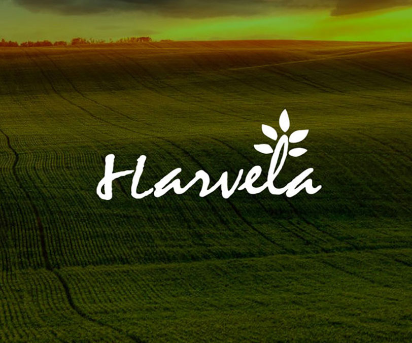 哈威莱 HAWELA